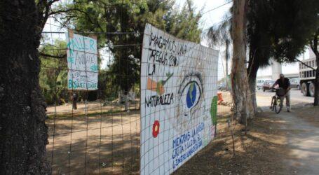 Vecinos piden frenar ecocidio por Autopista Siervo de la Nación