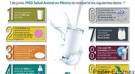 La leche, un alimento básico en la despensa de los mexicanos en esta cuarentena