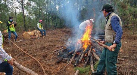 CONCLUYE SANEAMIENTO FORESTAL EN PARQUE ESTATAL MONTE ALTO EN VALLE DE BRAVO