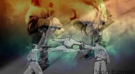 Taekwondo: entrenador/maestro; ciencia, principios y desarrollo espiritual