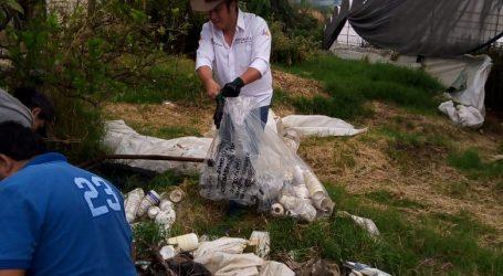 RECOLECTAN CINCO TONELADAS DE ENVASES VACÍOS DE AGROQUÍMICOS
