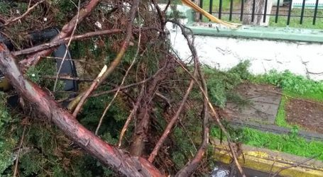 Atienden PC y Bomberos de Toluca encharcamientos e inundaciones