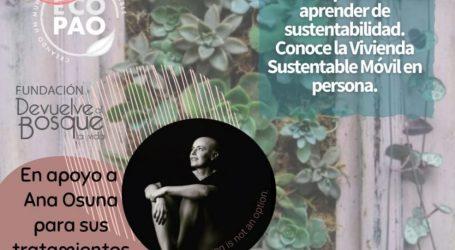 INVITA PAOLA BARREIRO A DONAR POR ANA OSUNA Y CONOCER LOS CUADROS VIVOS