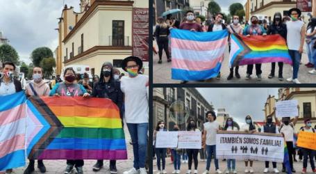 DE DEMOCRACIA, DIVERSIDAD Y PROTESTAS EN EL PRIMER PERIODO DE LA LXI LEGISLATURA