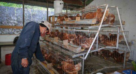 Promueve UAEM reciclaje y tratamiento adecuado de desechos electrónicos